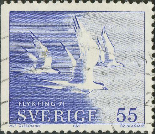 711Cv