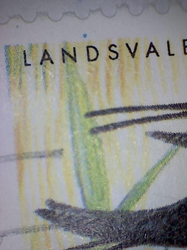 blå plet over D i Landsvale